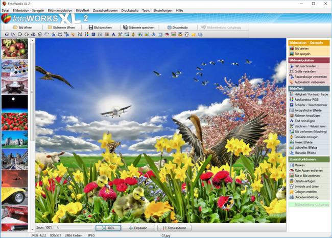 Bildbearbeitung online kostenlos hintergrund andern